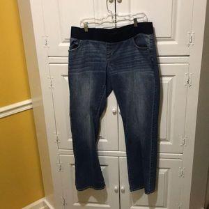 Denim - Liz Lang maturity jeans